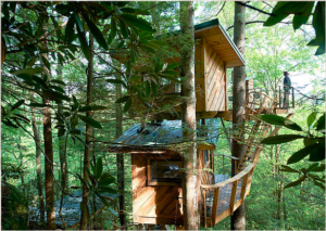 A Canopy Crew tree house