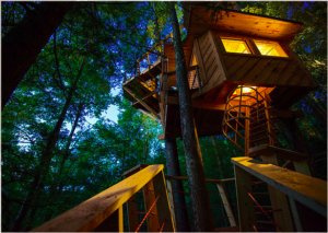 A Canopy Crew tree house at twilight